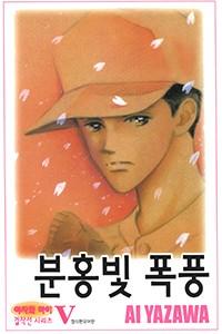 분홍빛 폭풍 [단행본]